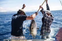 Oceantur Azores sportfishing