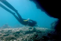 SPOT Freedive