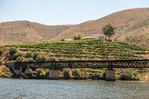 The Douro Valley, Pinhao, Portugal