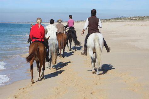Cavalos na Areia, Comporta, Portugal