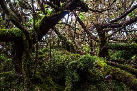 Trilha de Misterios Negros, Terceira, Portugal