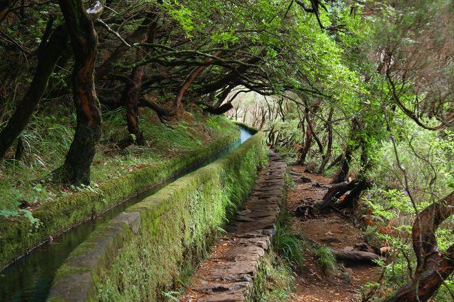 Levada Norte, Camara De Lobos, Portugal
