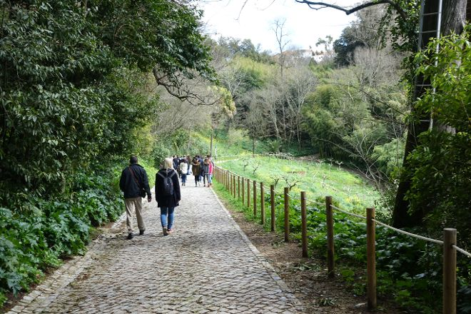 Sky Garden Parque de Arborismo, Coimbra, Portugal