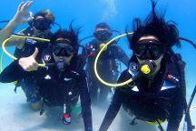 Culebra Divers