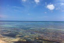 Isla Nena Scuba