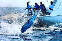 Sea Born Fishing Charters