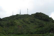 Toro Negro State Forest, Puerto Rico