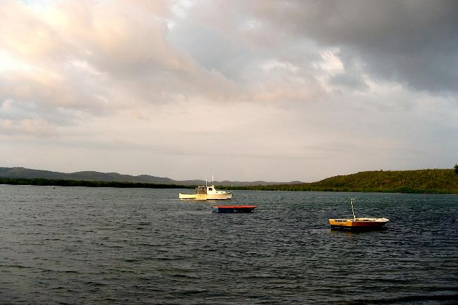 Bioluminescent Mosquito Bay, Isla de Vieques, Puerto Rico