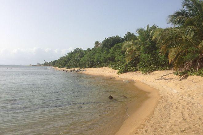 Green Beach, Isla de Vieques, Puerto Rico