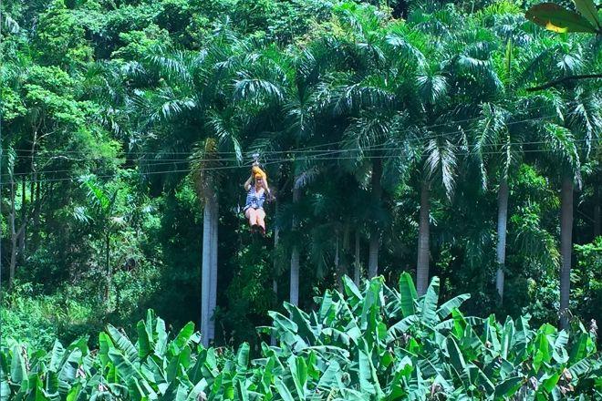 Yunque Ziplining, Luquillo, Puerto Rico
