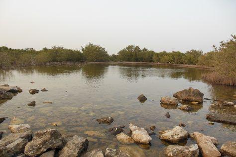 Purple Island - Al Khor Island, Al Khor, Qatar