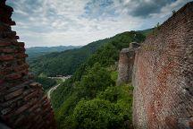 Cetatea Poienari, Arefu, Romania