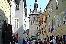 Transylvania Discovery Tours, Brasov, Romania