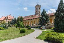 TravelBug Tours, Tirgu Mures, Romania
