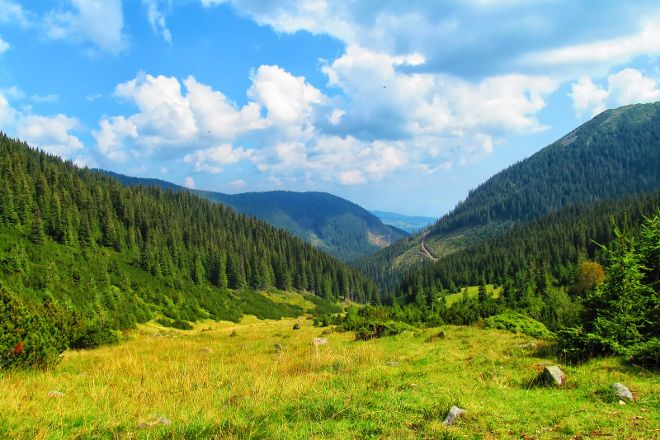 Transylvanian Dreams, Targu Mures, Romania