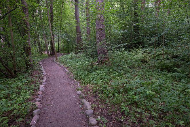 Eco Path, Komarovo, Russia