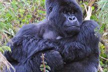 Kawira Safaris Ltd