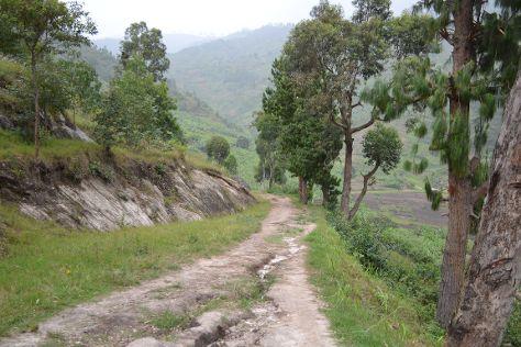 Congo Nile Trail, Rubavu, Rwanda