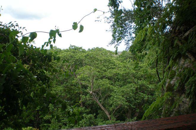 Falealupo Canopy Walk, Savai'i, Samoa