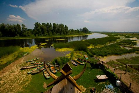 The Special Nature Reserve of Zasavica, Sremska Mitrovica, Serbia