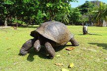 Curieuse Island, Praslin Island, Seychelles