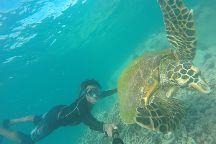 Nevis Ernesta La Digue Boat Excursions, La Passe, Seychelles