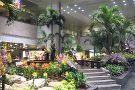 Enchanted Garden, T2, Changi Airport
