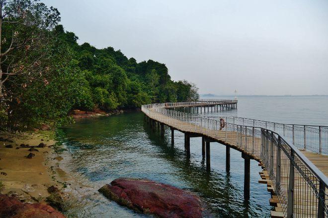 Chek Jawa, Pulau Ubin, Singapore