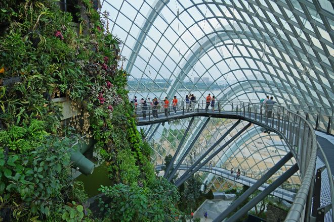 Cloud Forest, Singapore, Singapore