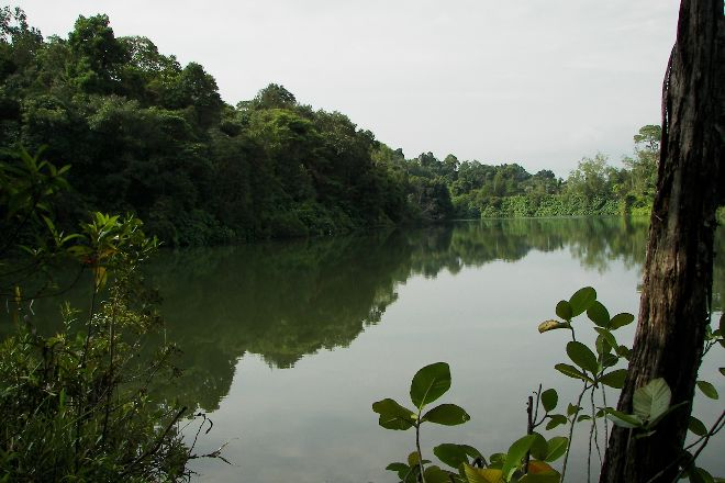 Upper Pierce Reservoir, Singapore, Singapore
