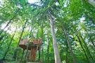 Celje Forest Tree House