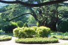 Sežana Botanical Garden