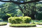 Sezana Botanical Park