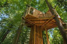 Celje Forest Tree House, Celje, Slovenia