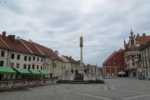 Plague Column, Maribor, Slovenia