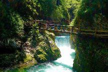 Pr1mo Tours, Bled, Slovenia