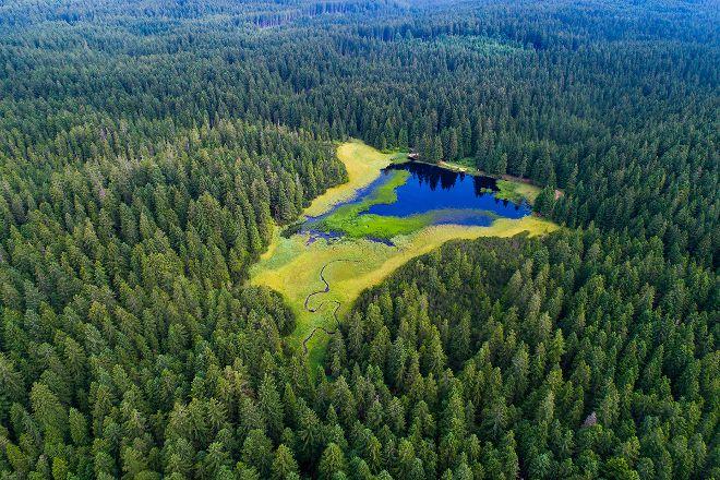 Black Lake, Pohorje, Slovenia