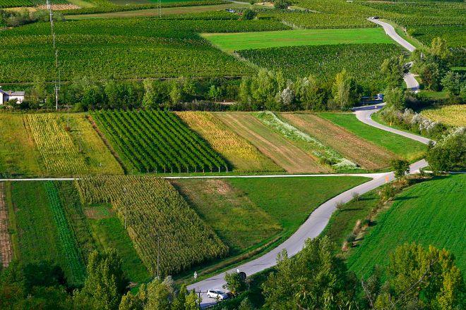 Winestronaut, Ajdovščina, Slovenia