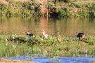 Olifants Wilderness Trail