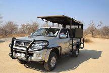 African Big5 Safaris