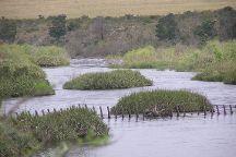 Bontebok National Park, Swellendam, South Africa
