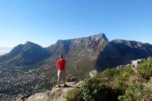 Cape and Table Mountain Tours, Cape Town Central, South Africa
