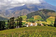 Cape To Grape Wine Tours, Cape Town, South Africa