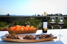Cape To Grape Wine Tours