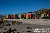 Dive Inn Diving & Touring, Plumstead, South Africa