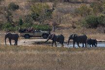 Eagle Eye Safaris, Roodepoort, South Africa