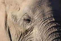 GAP Tours & Transfers, Hazyview, South Africa