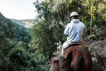 Hog Hollow Horse Trails, Plettenberg Bay, South Africa