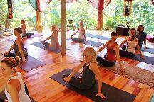 HOHM Yoga & Wellness Sanctuary