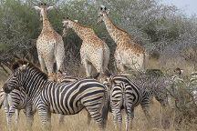 Kruger Pride Safaris, Marloth Park, South Africa